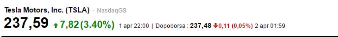 tesla_borsa